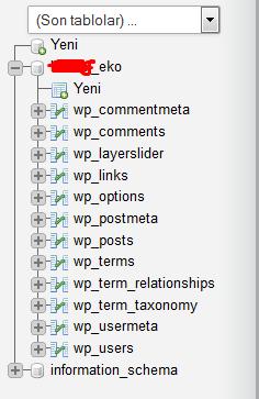 wordpress-sifre-sifirla2