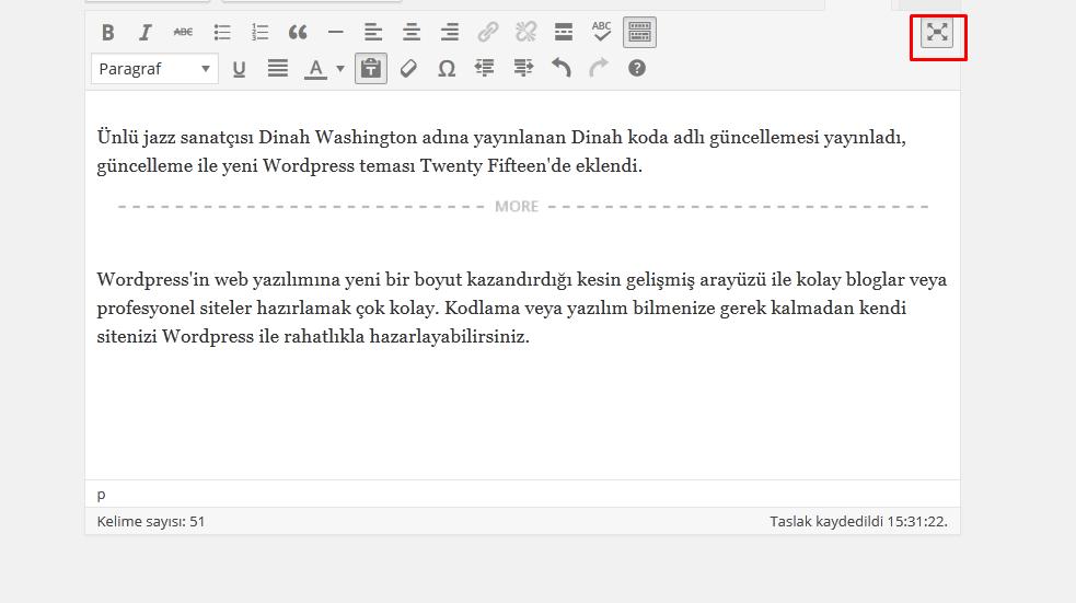wordpress-dikkat